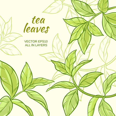 Illustration with green tea leaves on color background Ilustração