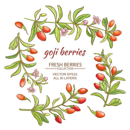 goji berries vector set on white background Ilustrace