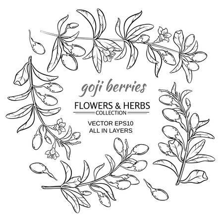 goji berries vector set on white background  イラスト・ベクター素材