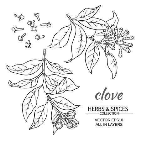 clove plant set on white background Ilustrace
