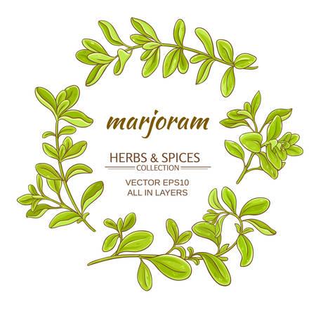 marjoram herb set on white background