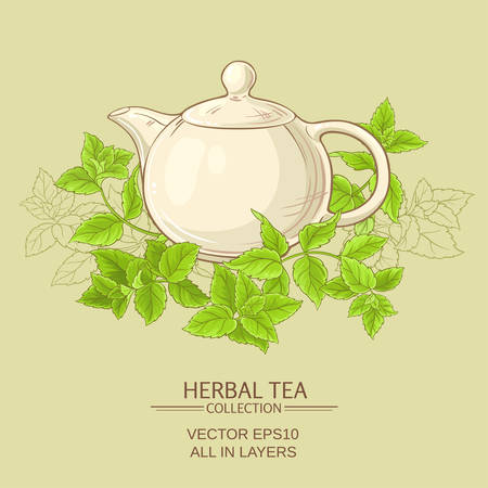 white teapot and peppermint on color background