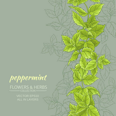 peppermint leaves vertical vector pattern on color background 矢量图像