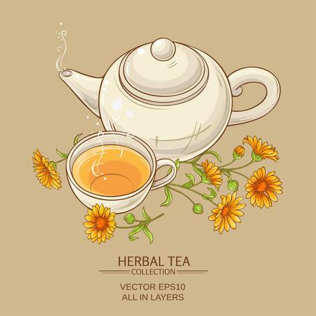 calendula: calendula tea  vector illustration