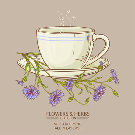 corn flower: cup of corn flower tea