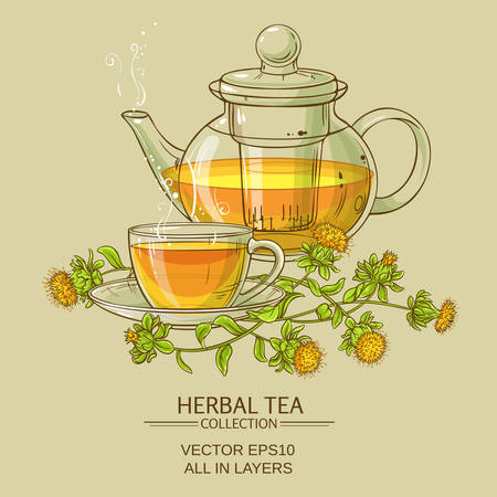 pistil: safflower tea vector illustration