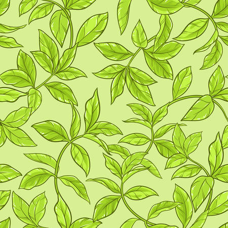 green tea leaves: green tea leaves seamless pattern on color background