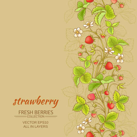 strawberry vector pattern on color background Reklamní fotografie