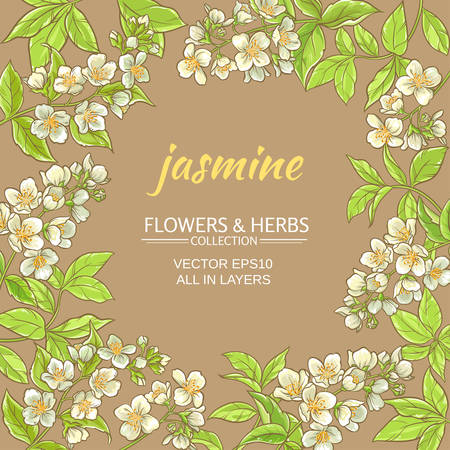 jasmine flowers vector frame on brown background Ilustração