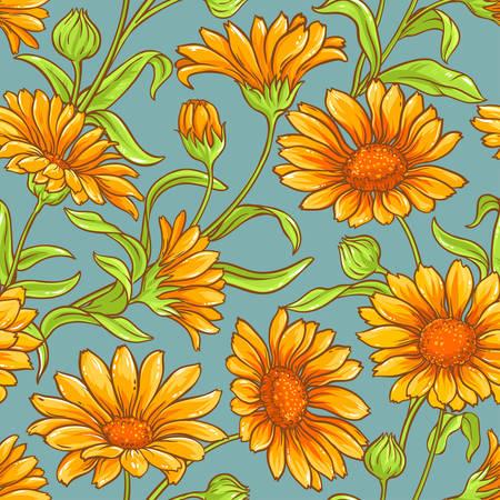 calendula: calendula flowers vector color seamless pattern on color background Illustration