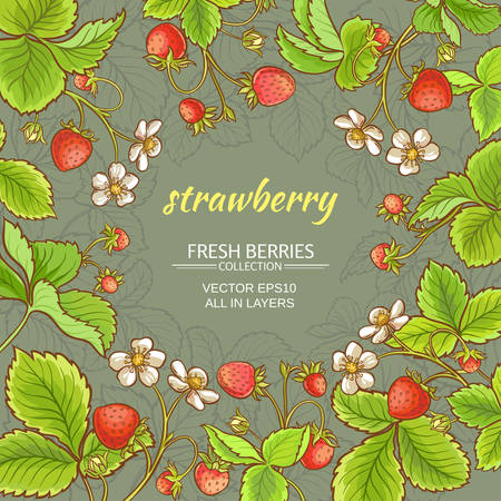 strawberry fruits and flowers vector frame on color background Ilustrace
