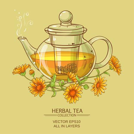 calendula: vector illustration with calendula tea in glass teapot Illustration