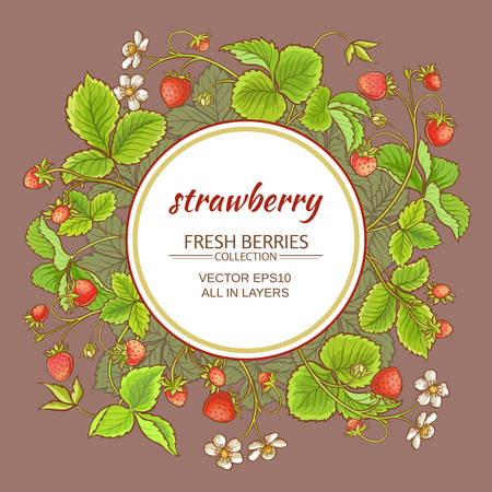 strawberry berries and flowers vector frame on color background