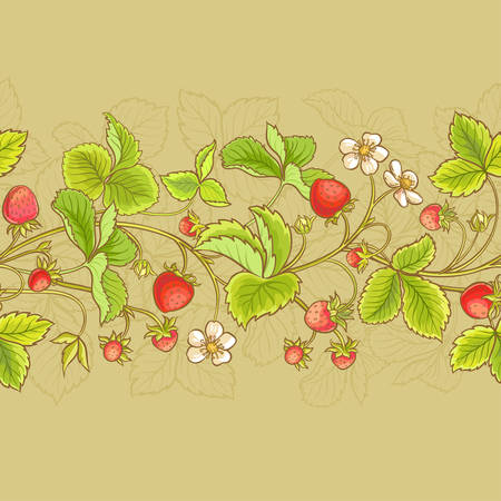 strawberry  vector seamless pattern  on color background