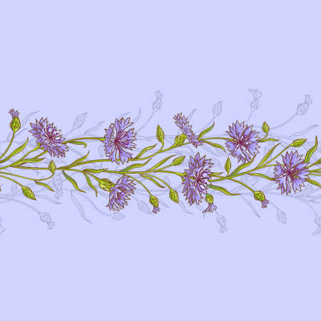 horisontal: cornflower  vector pattern