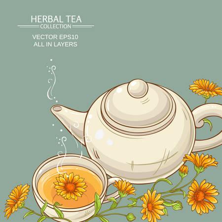 calendula: calendula tea  vector background