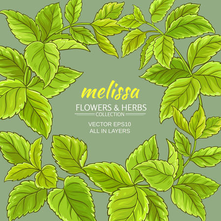 melissa branches vector frame on color background