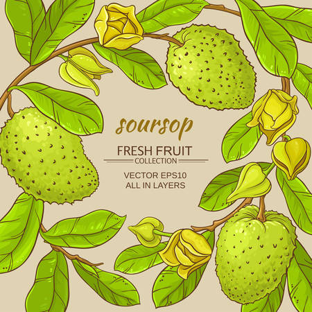 soursop branches vector frame on color background
