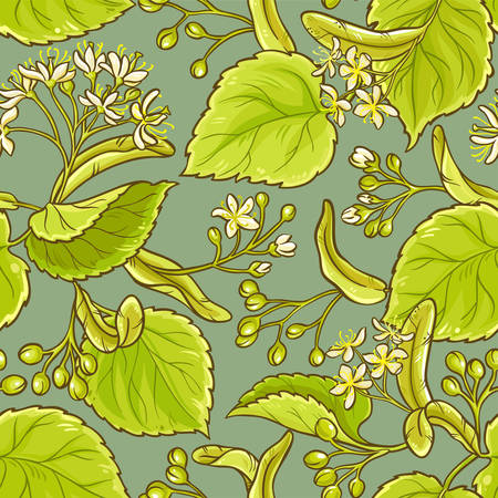 linden vector seamless pattern on color background