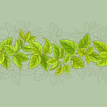 melissa vector seamless pattern on color background Illustration