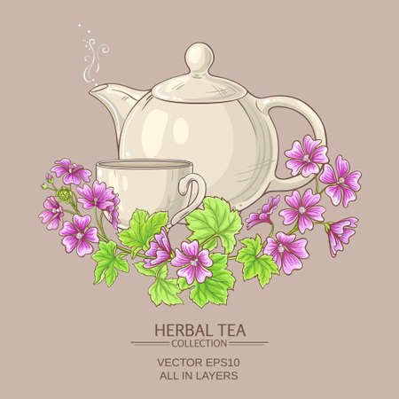 Cup of malva  tea with teapot on color background