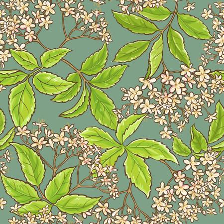 ニワトコの花一色の背景にシームレスなパターンをベクトル