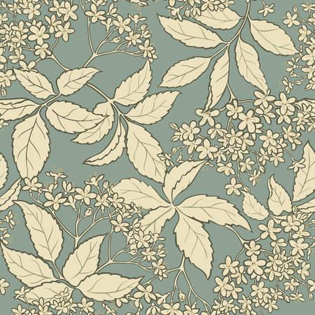 elderflower vector seamless pattern on color background