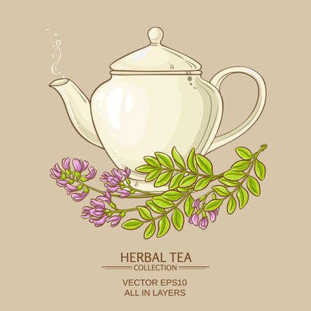 astragalus tea vector illustration on color background