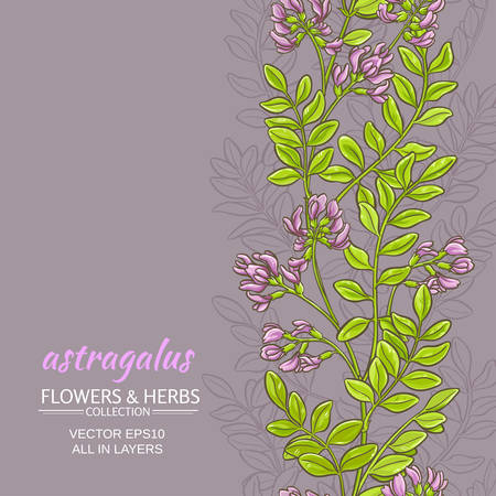 astragalus plant vector pattern on color background