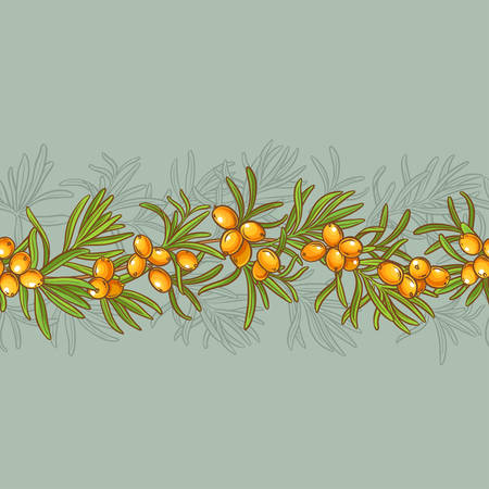 Sea buckthorn vector seamless pattern on color background