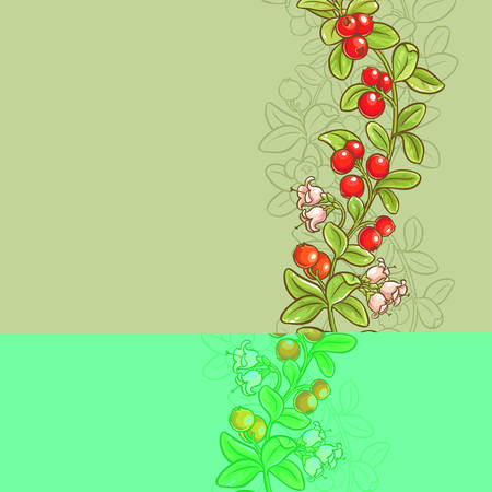 cranberry vector background