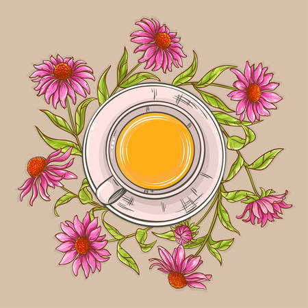 cup of echinacea tea