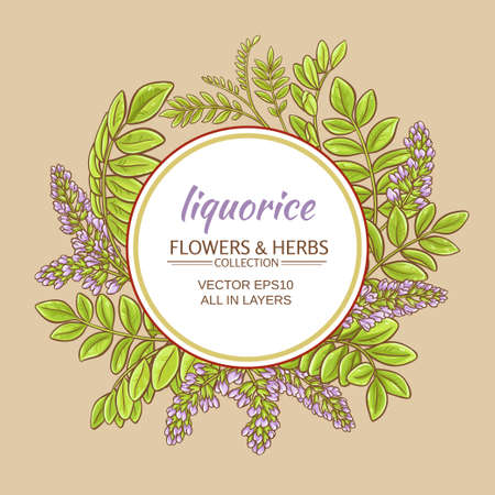 liquorise plant vector frame on color background