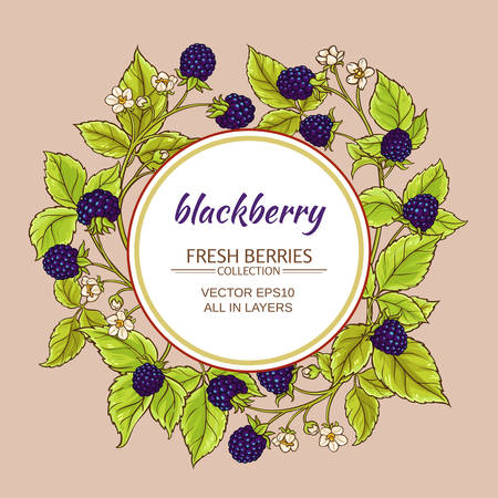 blackberry vector frame
