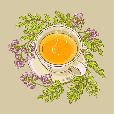 Astragalus tea illustration Ilustração