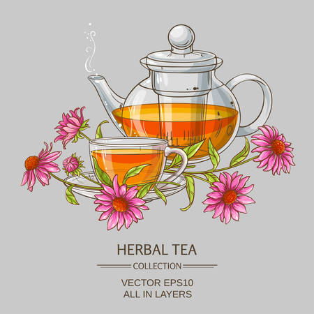 Cup or echinacea tea and teapot Illustration