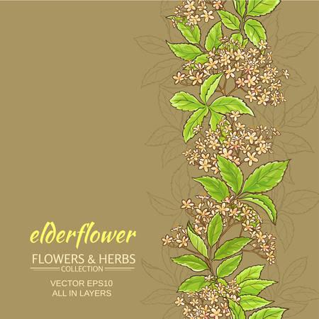 elderflower vector background