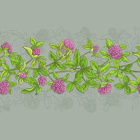 trifolium: Clover vector pattern. Illustration