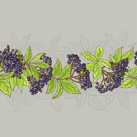Elderberry seamless pattern.