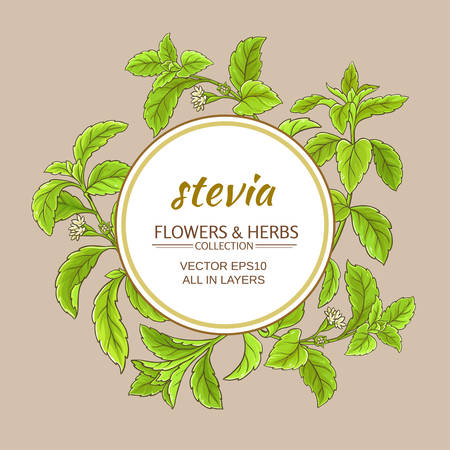stevia branches vector frame on color background Illustration