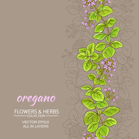 oregano vector background