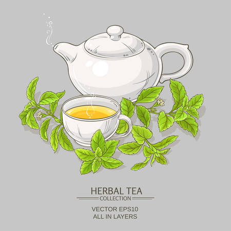 stevia tea illustration