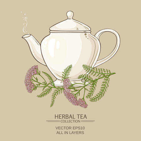yarrow: Yarrow tea in teapot on color background Illustration