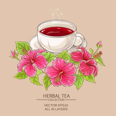 Cup of hibiscus tea Illustration