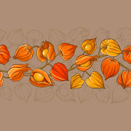 physalis vector pattern