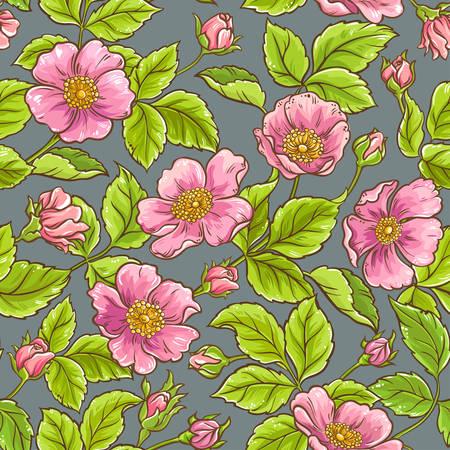 modello di fiori di rosa selvatica