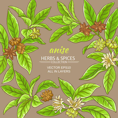 anise branches vector frame on color background