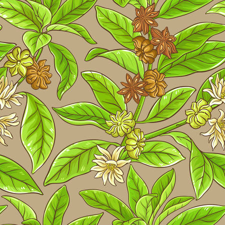 Anise branches vector pattern on color background Illustration