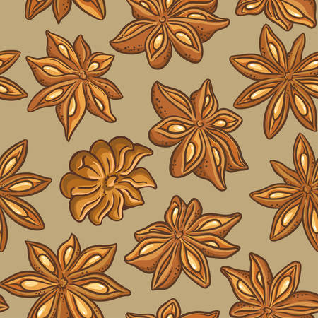 anise stars vector pattern on color background