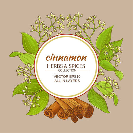 Cinnamon branches vector frame on colored background